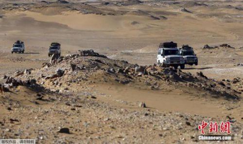 埃及军方称在西部沙漠地区击毙10名恐怖分子(图)