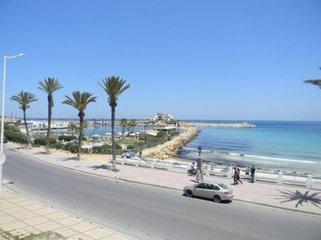 突尼斯军方与极端分子交火 打死1人重伤3人