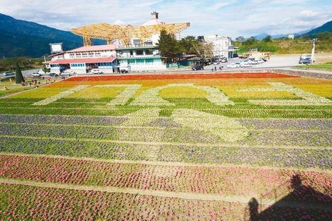 大地变成画布 花莲农民种出可吃的地景(图)