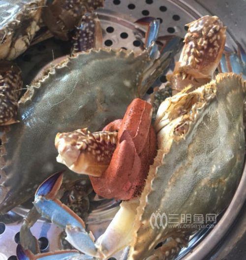 网曝三明市民花455元买2.7斤螃蟹 皮筋重1.3斤