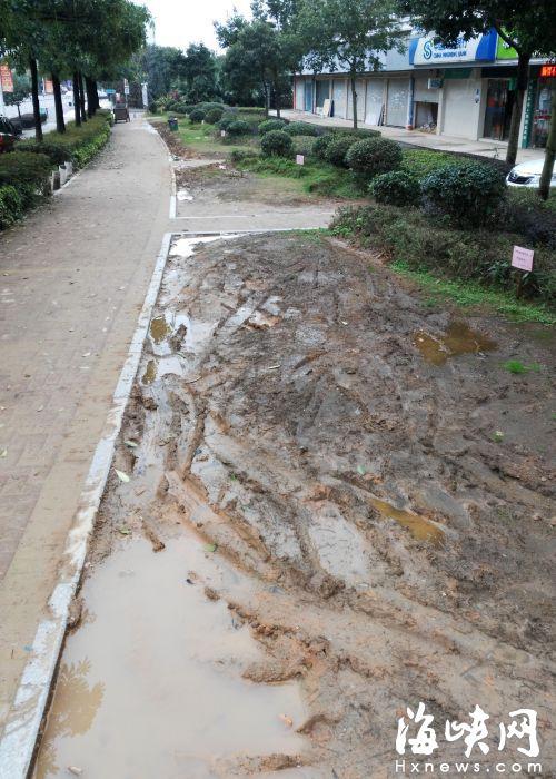 正祥香槟风范小区外,店面前的绿地破损严重