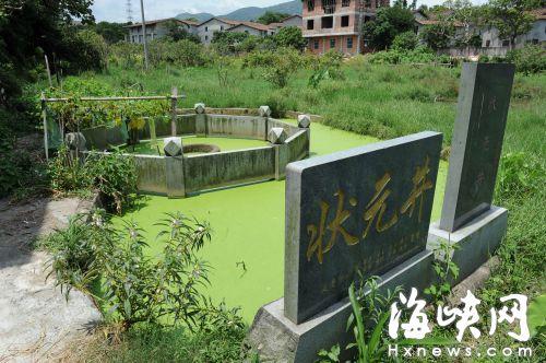延寿村的一片荒地中有一个半月形的水池,状元井就坐落其中