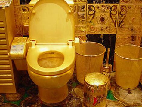 纽约博物馆内安装金马桶 游客可欣赏或使用