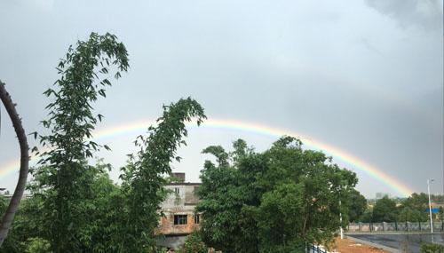 骤雨彩虹闹榕城 明起最高气温将持续35℃以上