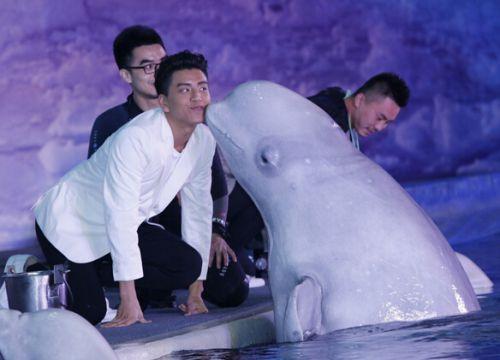 《鲛珠传》王大陆负责打情骂俏 撩白鲸遭强吻3次
