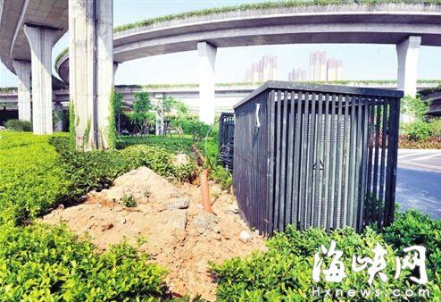福州双湖环岛绿化带电缆沟被填 现又毁绿挖沟