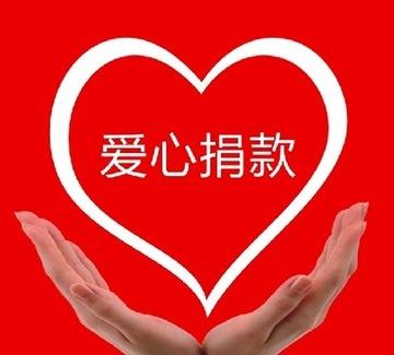 """上海锦天城(重庆)律师事务所李炎律师表示,类似于""""善款购车""""的质疑并非个例。捐助者如果认为自己受了欺骗,可与受捐助者协商,如受捐助者同意退还捐赠款项,则无问题;如受捐助者不同意退还捐赠款项,而捐助者认为受到欺诈,则可以向法院起诉,请求撤销赠与,即要求受捐助者退款。"""