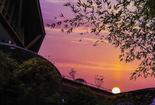 金秋国庆:鼓岭十一黄金之秋 福州城最美秋天云舍深藏