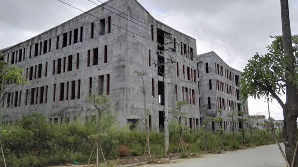 林庆财与人串通竞买6号地块已搭建起房屋框架。 本文图片均为澎湃新闻记者 王选辉 图