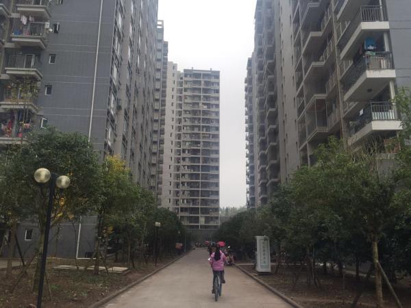 景县一村支书租房可公谎称4年骗2268万四川图纸有吗做的图片