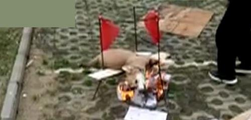 男子当街生火烤狗:自己养大的狗不听话打算吃掉(图)
