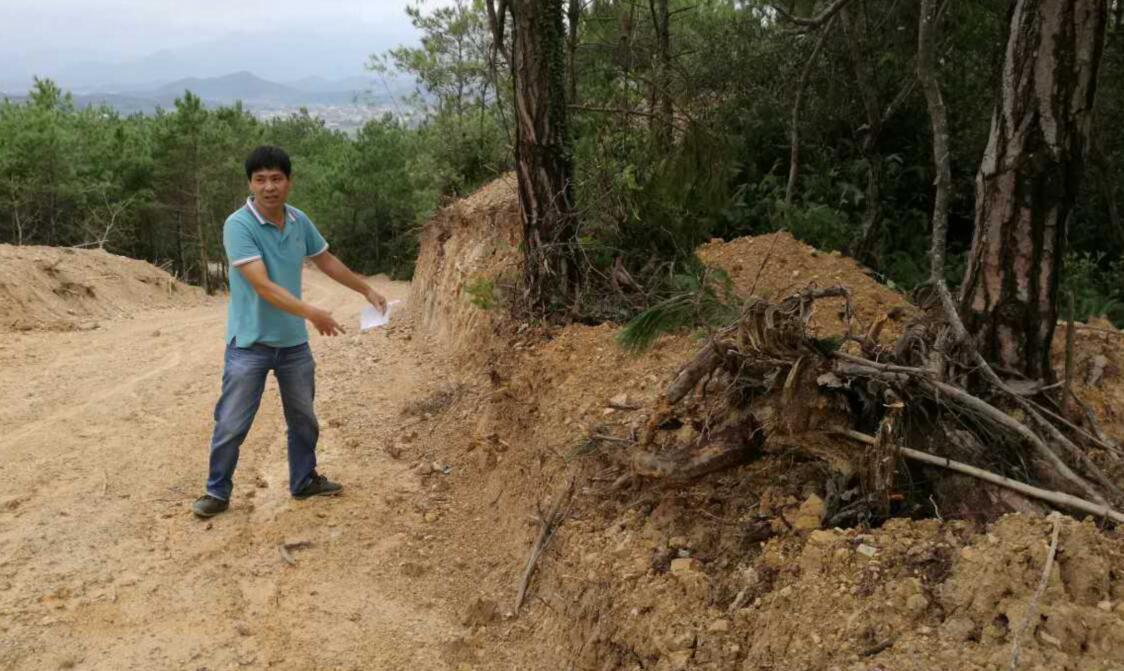 福清市上逕鎮:生態公益林被毀 誰來制止?