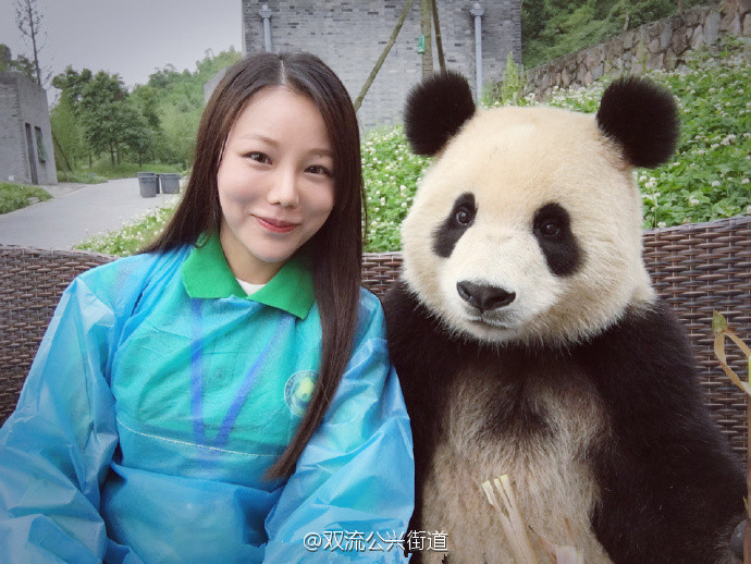 萌翻!大熊猫与妹子合影 国宝这镜头感满分