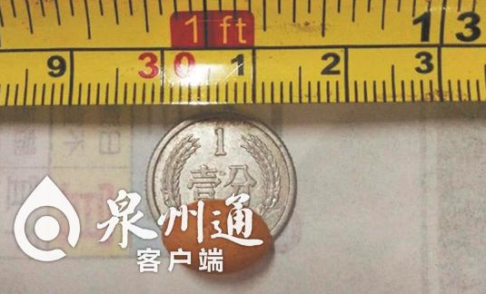 晋江东石发现超级袖珍蛋 小到可申请世界纪录
