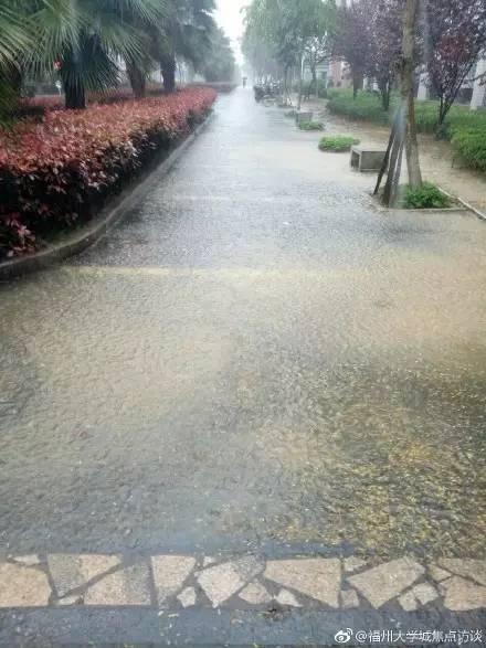 今天中午福州暴雨太猛了 共享单车都浮起来了(2)