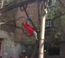 红衣女子爬树自缢