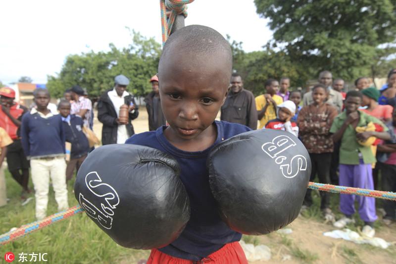 近日,津巴布韦奇通圭扎,一名参加拳击赛的小男孩做出出拳的姿势。Tsvangirayi Mukwazhi/东方IC