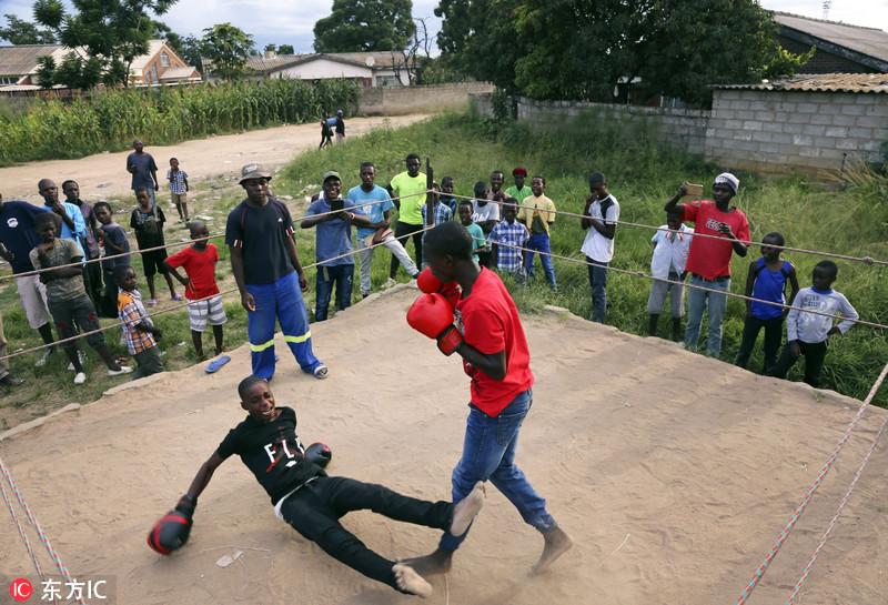 近日,津巴布韦奇通圭扎,一名男孩被击倒在拳击台上。Tsvangirayi Mukwazhi/东方IC