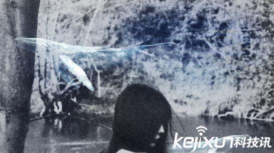 粉鲸游戏50指令图片