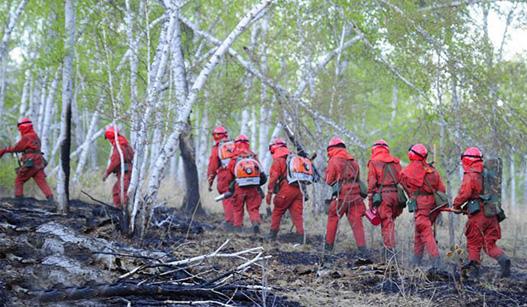 内蒙古那吉林场森林火灾火场烟点全部扑灭