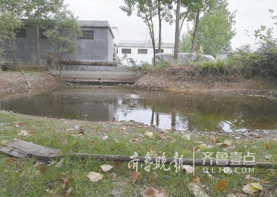 山东:临高考女生救女孩溺亡 用木锨救人不慎落水
