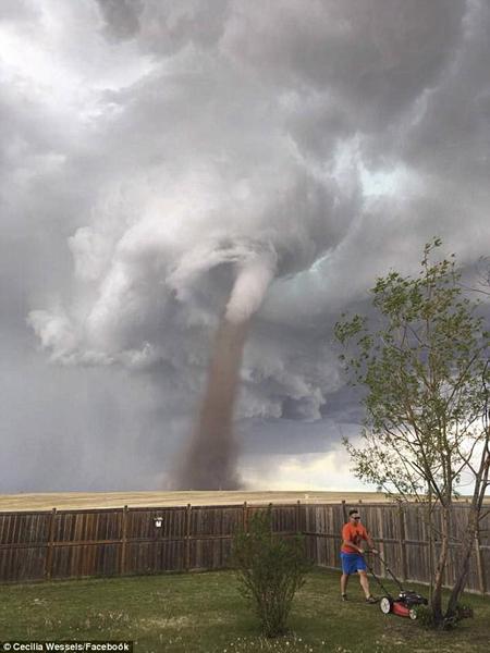 加拿大男子无惧背后龙卷风 淡定修剪自家草坪