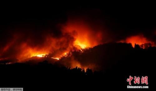 森林大火致62死 葡萄牙全国陷紧急状态 森林大火钱柜777娱乐