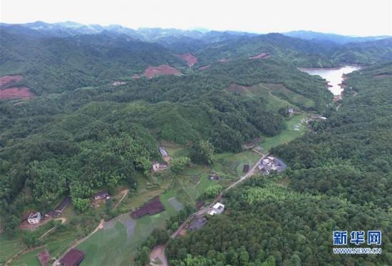 福建集体林权制度改革促进生态文明建设