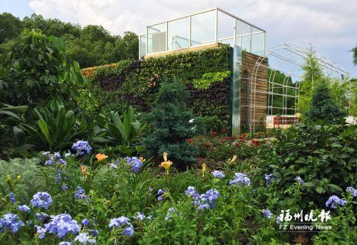 """西湖公园""""空中花园""""基本建成 共127种植物"""