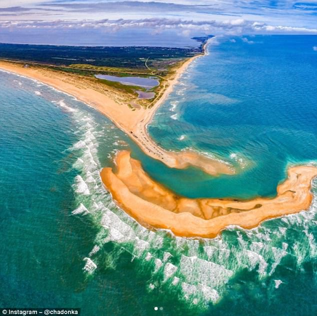 """美海岸现""""贝壳岛""""引关注 专家提醒小心鲨鱼"""