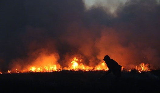 中蒙边境突发火灾 大火已蔓延4天3夜