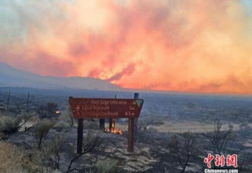 加州森林大火浓烟蔽日 野马公路奔逃如灾难片