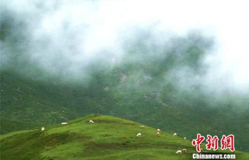 资料图:七月的祁连山云雾缭绕。 郎文瑞 摄