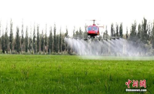 资料图:新疆农民利用高科技产品飞机对农作物开展空中喷洒农药。李江帆 摄