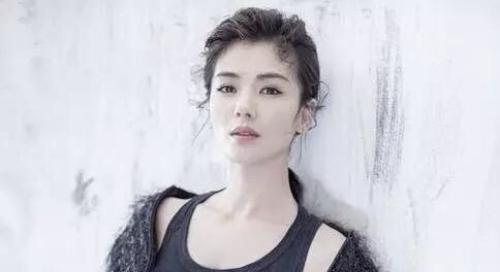 我的前半生第二部演员表剧情介绍靳东刘涛续缘 罗子君人选是谁