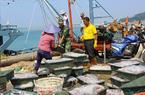 """防台风""""天鸽"""" 漳州公安边防急忙协助渔民抢收海产品"""