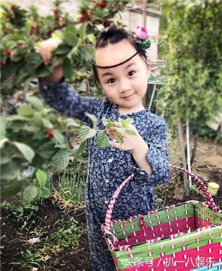 而小山竹更是凭借可爱的外形,俏皮的表情和一口标志性的东北话,在美拍