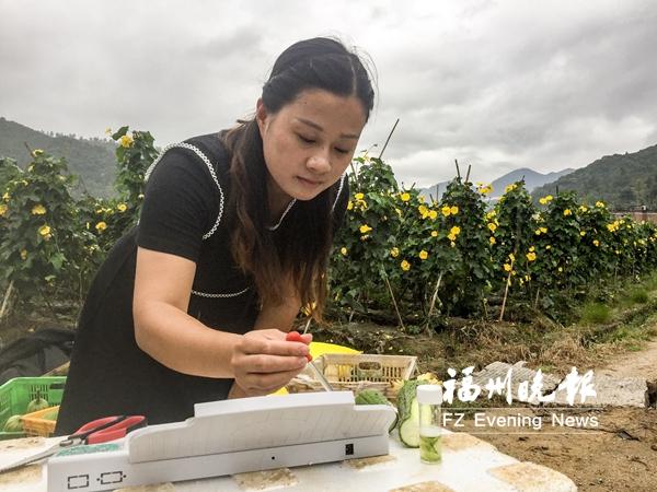 福州建立全省首个村级蔬菜检测制度 把关菜篮子安全