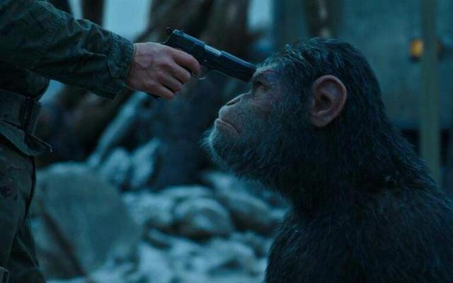 战狼2都服气!这部电影成本不足100万,却拿下了近13亿的总票房
