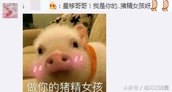 陈晓在那年花开月正圆里吻猪头,陈妍希看到了居然是这个表情