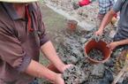 霞浦土笋养殖父子呼唤水产专家 打破土笋繁育瓶颈