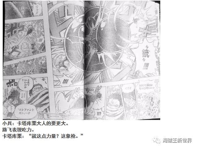 海贼王漫画更新为什么改时间到每周五 海贼王879最新情报分析
