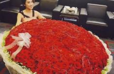 杨子送9999朵玫瑰示爱她
