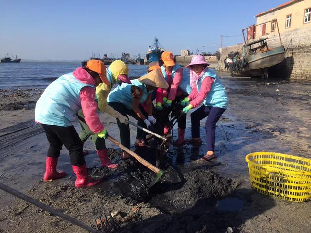 石狮60多名志愿者清理滩涂上的垃圾 3年清理740吨