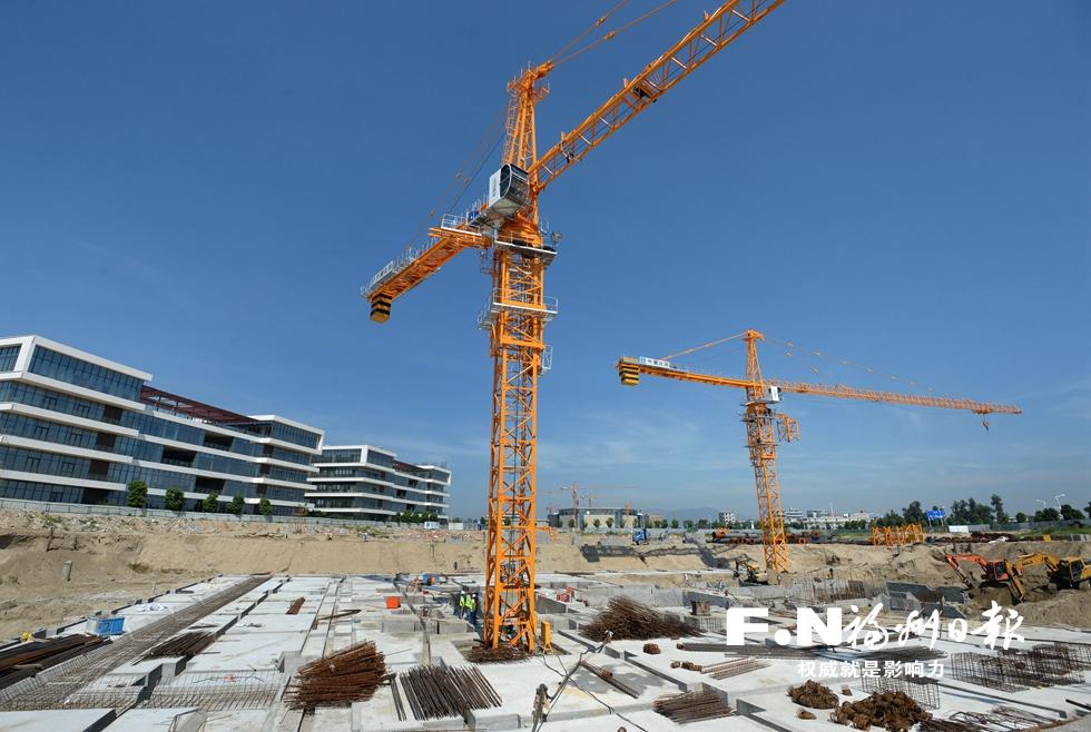 这个国庆有点忙 滨海新城重点项目有序推进