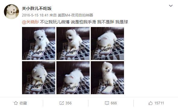 巧合?鹿晗给迪丽热巴取的外号,跟关晓彤的小狗重名,同情热巴
