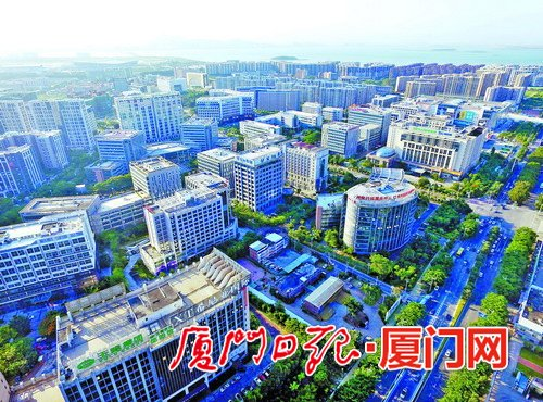 湖里区产业人才集中度不断提高 城区创新发展注入强劲动力