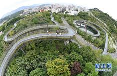 福州福道:独具魅力的城市森林步道