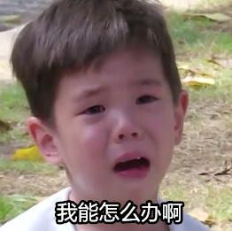 表情去哪儿5嗯哼哭出了一整套网友台词谢表情包耳朵!爸爸却说1图片
