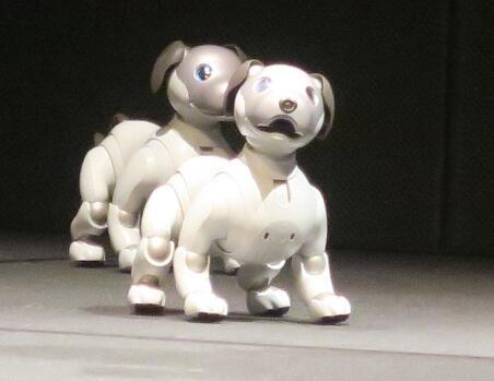 索尼推出更智能的新款机器狗aibo 于明年1月发售